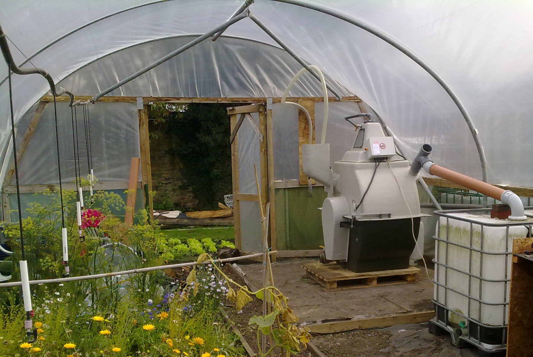 Early experimentation of anaerobic digester in polytunnel. CREDIT: Methanogen